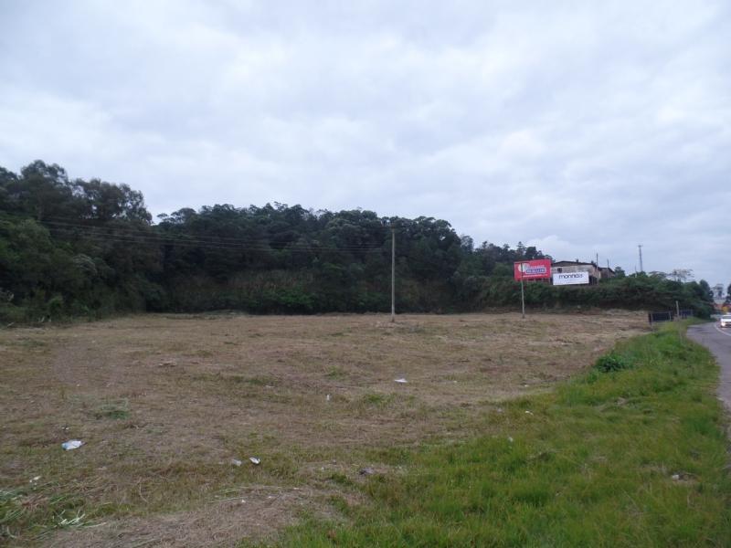 Terreno no bairro PIO X em FARROUPILHA/RS - Loja Imobiliária o seu portal de imóveis para alugar, aluguel e locação