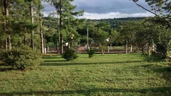 Chácara / sítioVenda em Taquara no bairro Freguesia do Mundo Novo