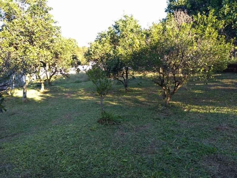 Chácara / sítioVenda em Taquara no bairro Santa Cristina do Pinhal