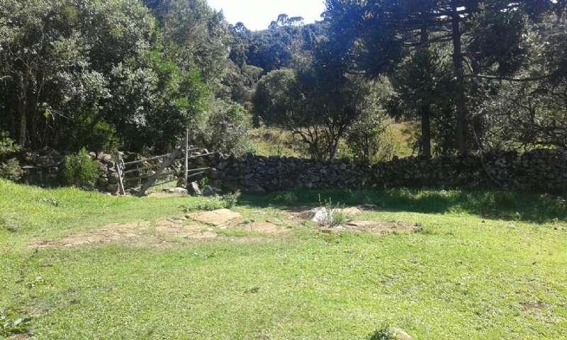 Terreno no Estrada Geral de Bossoroca - Imóveis a venda em Lages e região