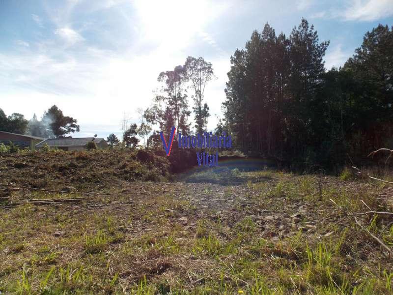 Terreno no bairro Germania em Nova Petrópolis