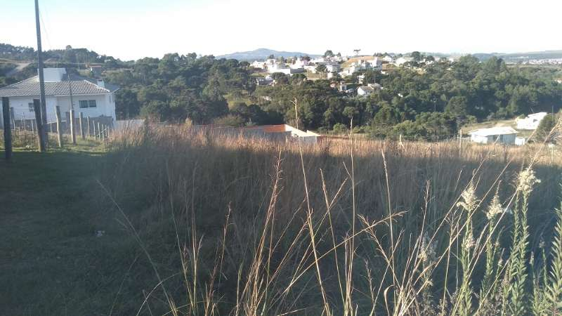 Terreno no Vila Maria